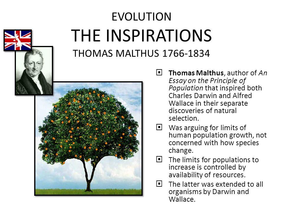 evolution the inspirations thomas malthus  thomas malthus  evolution the inspirations thomas malthus 1766 1834  thomas malthus author of an essay