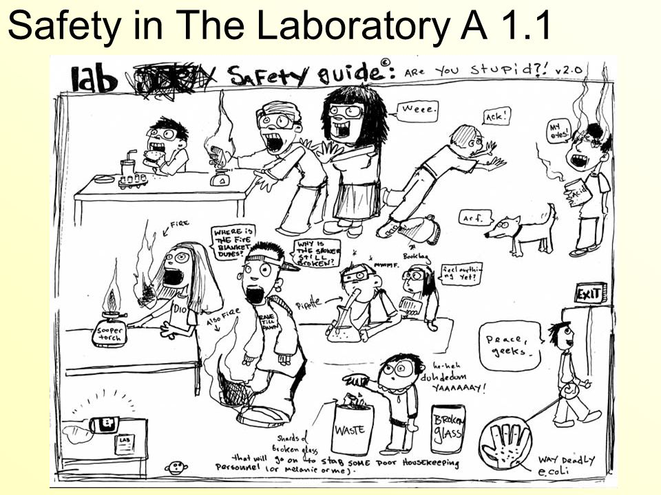 The Plan Learn about lab safety become aware of WHMIS guidelines – Lab Safety Cartoon Worksheet