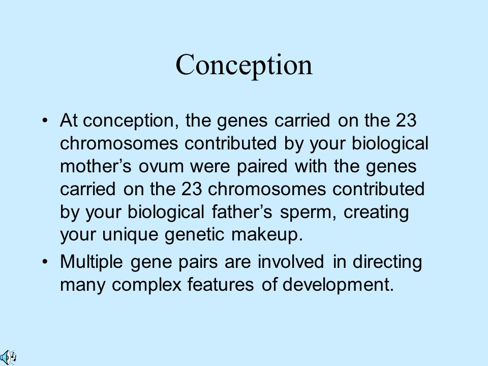 At conception, the genes carried on the 23 chromosomes contributed by your biological mother's ovum were paired with the genes carried on the 23 chromosomes contributed by your biological father's sperm, creating your unique genetic makeup.