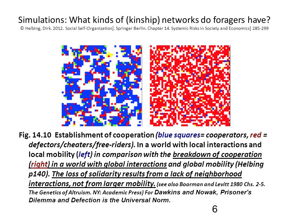 Theory of Foragers, Networks, and the Evolution of Cooperation AAA ...