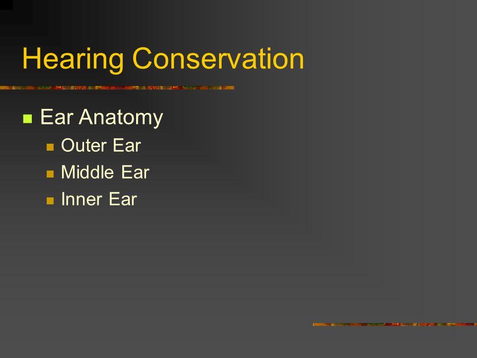 Hearing Conservation TDI-Brooks International. Hearing Conservation ...