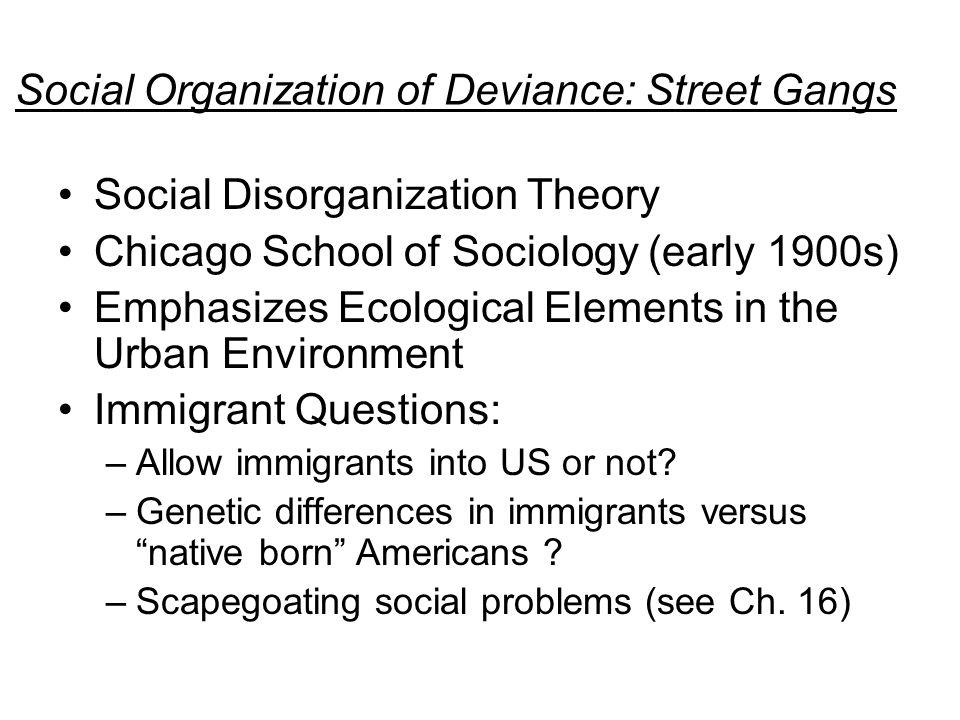 social disorganization question and answe Academic paper homework help question social disorganization cja 384 social disorganization question social disorganization question-and-answer cja 384 week 4 individual.