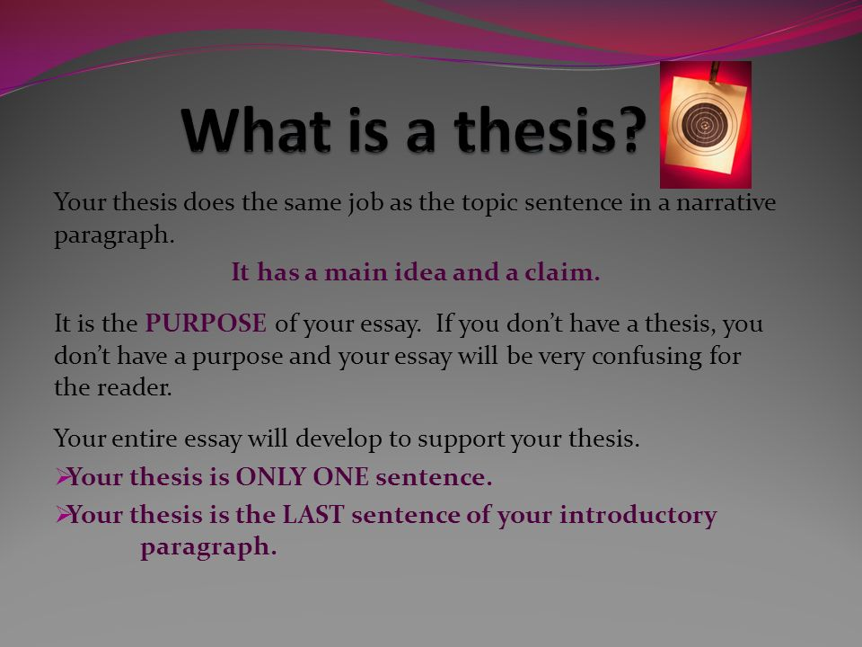 how do you support your thesis