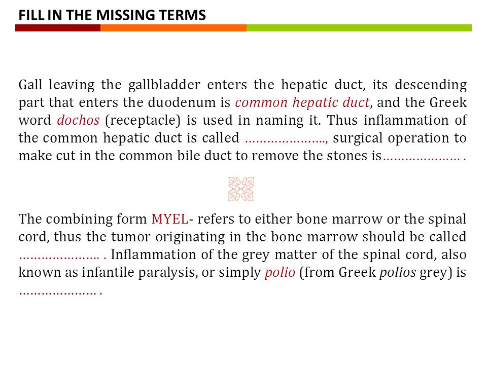 Compound words in medical terminology. BASIC RULES OF COMPOUNDING ...