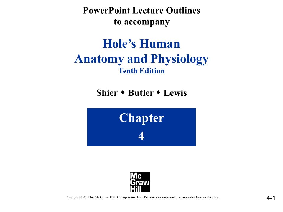 Hole\'s Human Anatomy and Physiology Tenth Edition Shier  Butler ...
