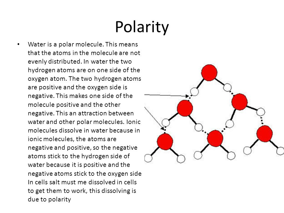 Polarity Water is a polar molecule.