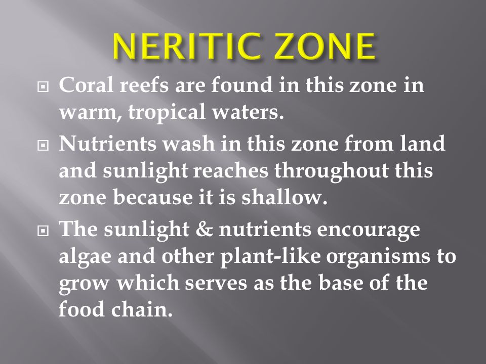  Coral reefs are found in this zone in warm, tropical waters.