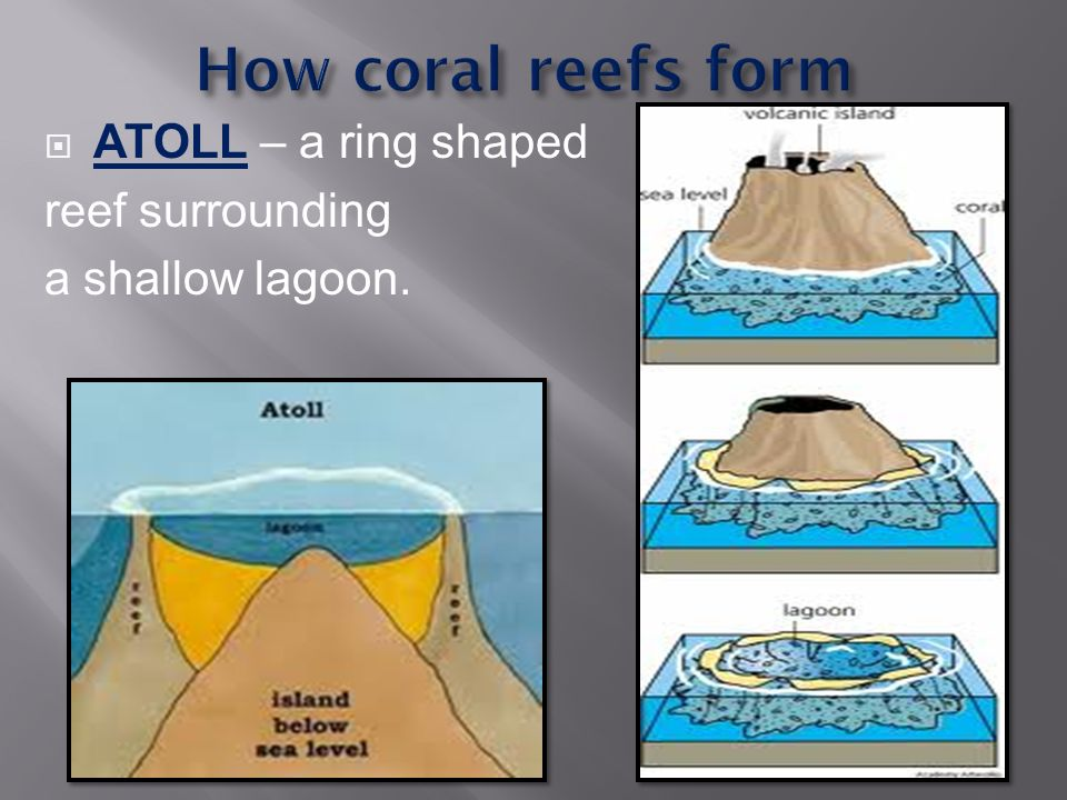 ATOLL – a ring shaped reef surrounding a shallow lagoon.
