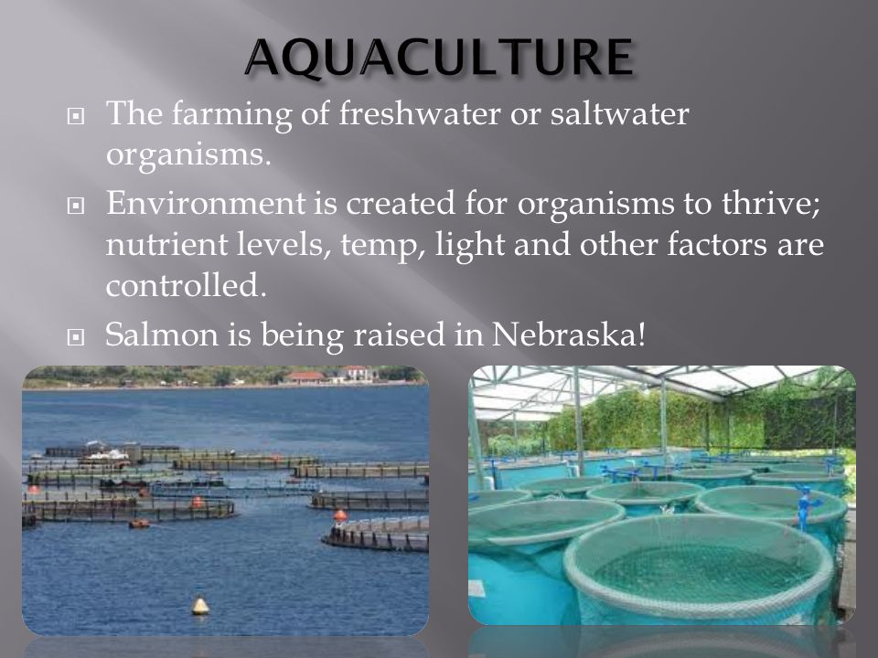  The farming of freshwater or saltwater organisms.