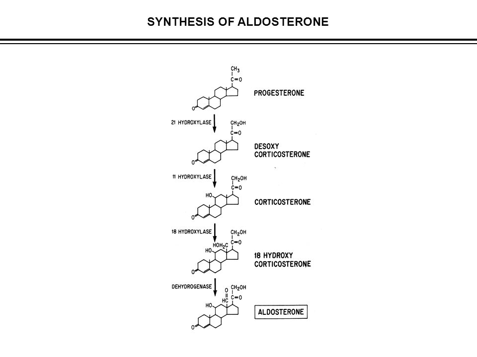 SYNTHESIS OF ALDOSTERONE