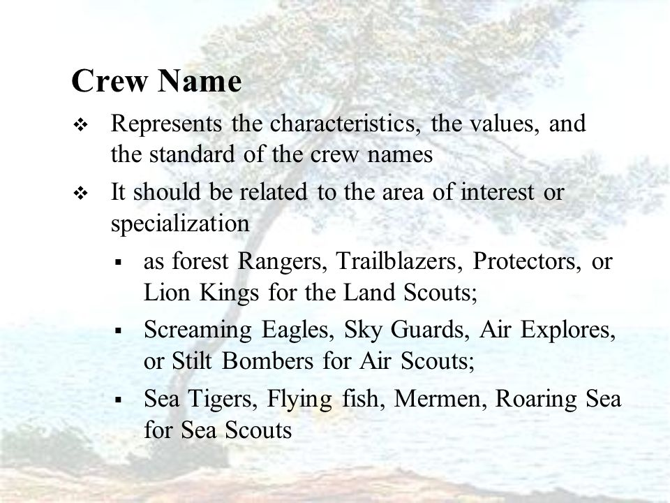 Crew Name  Represents the characteristics, the values, and the standard of the crew names  It should be related to the area of interest or specialization  as forest Rangers, Trailblazers, Protectors, or Lion Kings for the Land Scouts;  Screaming Eagles, Sky Guards, Air Explores, or Stilt Bombers for Air Scouts;  Sea Tigers, Flying fish, Mermen, Roaring Sea for Sea Scouts