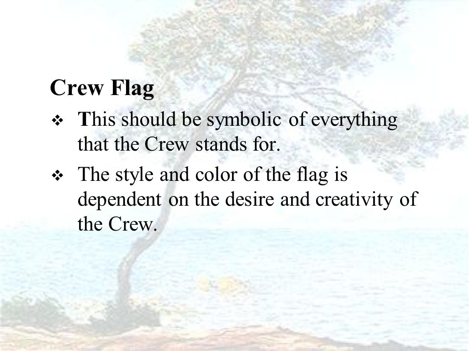 Crew Flag  This should be symbolic of everything that the Crew stands for.