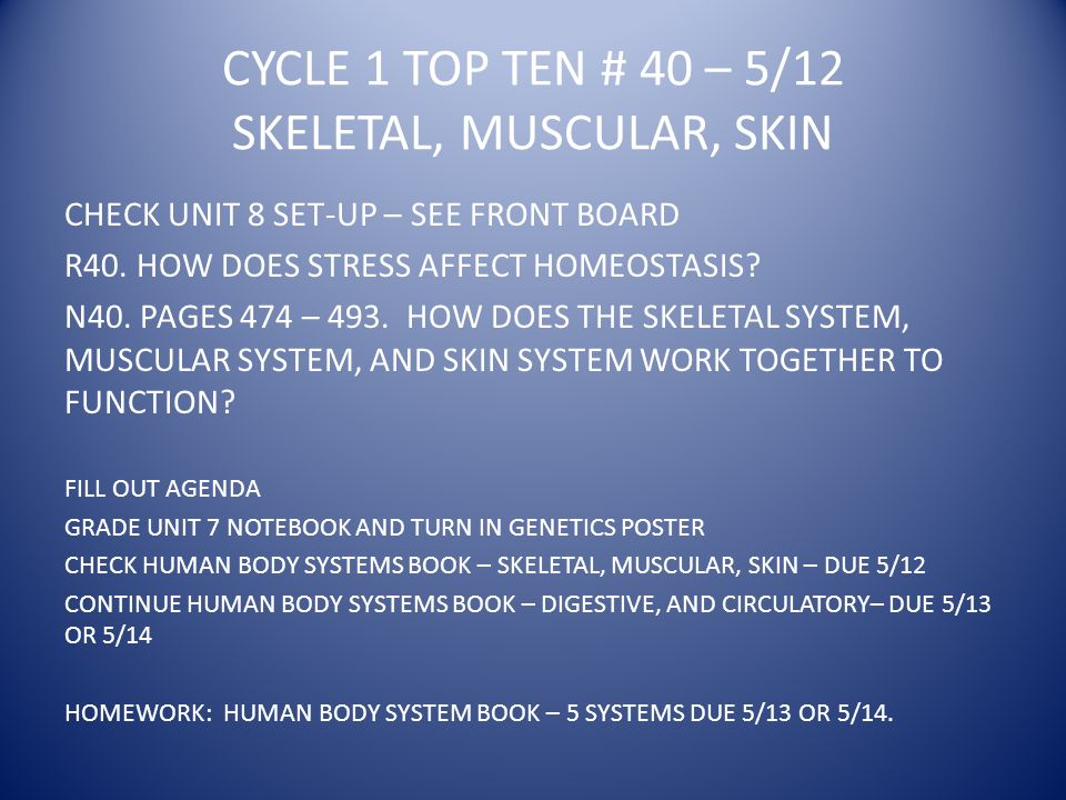 CYCLE 1 TOP TEN # 40 – 5/12 SKELETAL, MUSCULAR, SKIN CHECK UNIT 8 SET-UP – SEE FRONT BOARD R40.