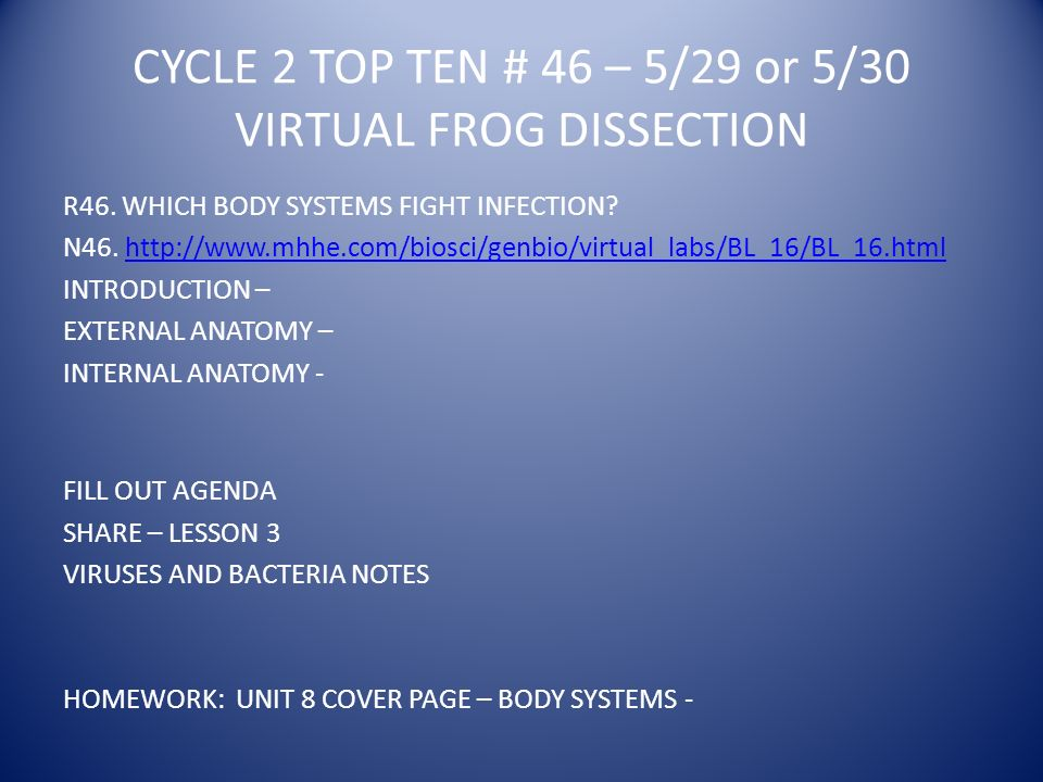 CYCLE 2 TOP TEN # 46 – 5/29 or 5/30 VIRTUAL FROG DISSECTION R46.