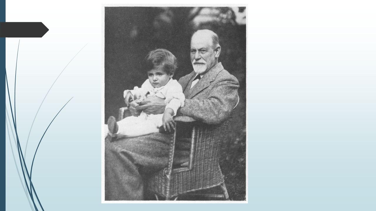freud analysis of a phobia Analysis of a phobia of a five-year old boy freud, s (1909) the infamous case of sigmund freud, little hans and the oedipus complex this study was actually a very unique analysis so stop smirking and read on.