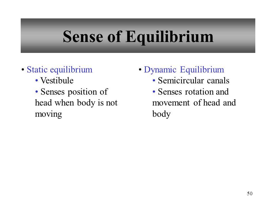50 Sense of Equilibrium Static equilibrium Vestibule Senses position of head when body is not moving Dynamic Equilibrium Semicircular canals Senses rotation and movement of head and body