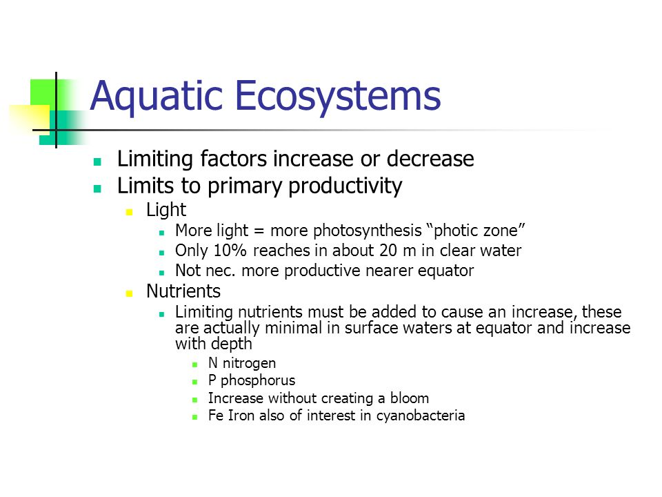Aquatic Ecosystems Limiting factors increase or decrease Limits to primary productivity Light More light = more photosynthesis photic zone Only 10% reaches in about 20 m in clear water Not nec.