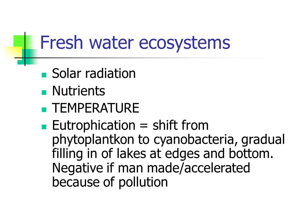 Fresh water ecosystems Solar radiation Nutrients TEMPERATURE Eutrophication = shift from phytoplantkon to cyanobacteria, gradual filling in of lakes at edges and bottom.