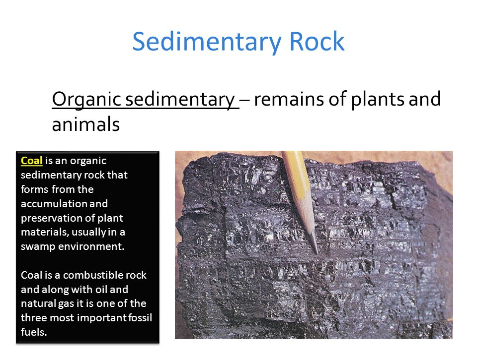 Types of Rock Images from Geology.com unless otherwise noted - ppt ...