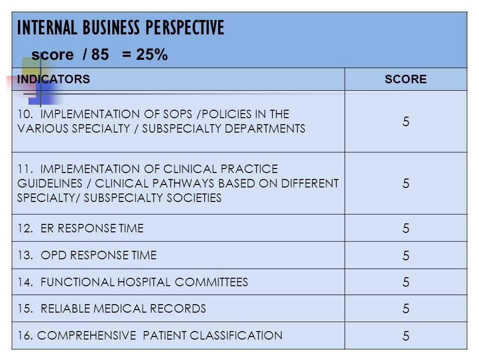 INTERNAL BUSINESS PERSPECTIVE score / 85 = 25% INDICATORSSCORE 10.