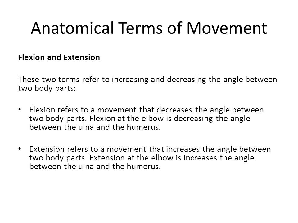 Anatomical terms Essay Academic Writing Service