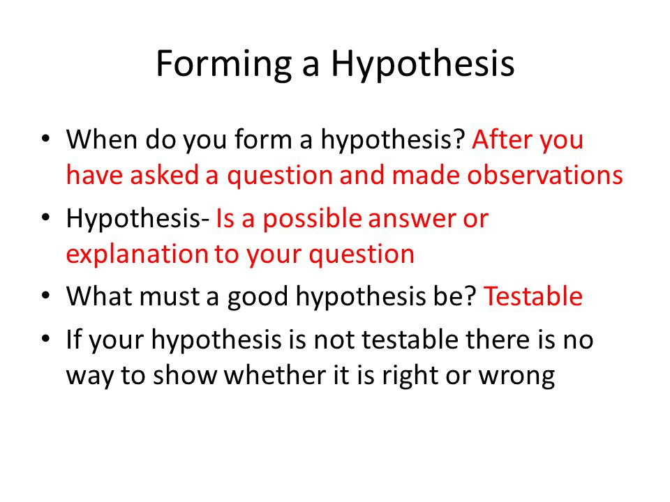 Forming a Hypothesis When do you form a hypothesis.