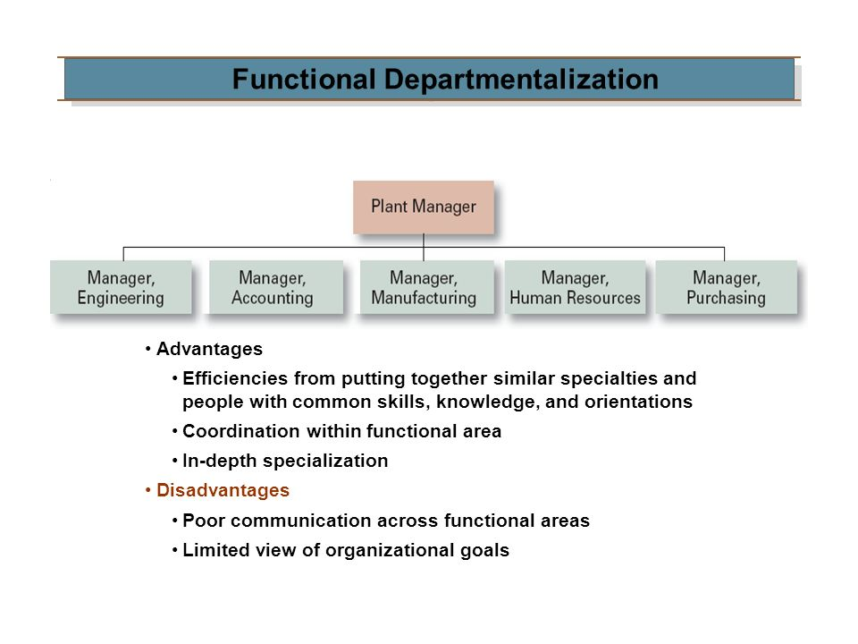 Functional Departmentalization Advantages Efficiencies from putting together similar specialties and people with common skills, knowledge, and orienta