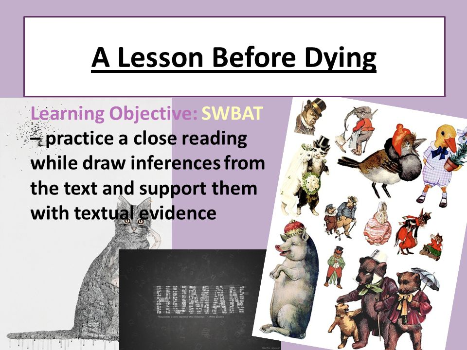 a lesson before dying analysis essay A lesson before dying essay a lesson before dying is a fantastic novel written by ernest j gaines grant wiggins, jefferson, and paul are three characters from the novel that benefited, embodied, and understood the most important lesson before dying.
