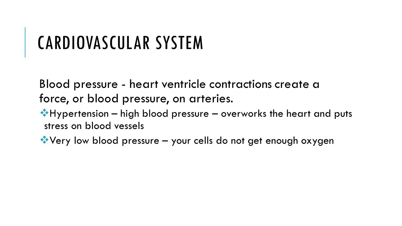 cardiovascular sounds and blood pressure essay Biology term papers (paper 3245) on cardiovascular system (good a paper): tara feeney oct 24, 1997 1st period cardiovascular system the cardiovascular system, also known as the circulat.