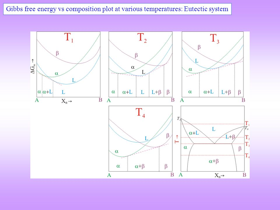 Phase diagrams phase rule types of phase diagrams lever 49 gibbs free energy vs composition plot at various temperatures eutectic system ccuart Images