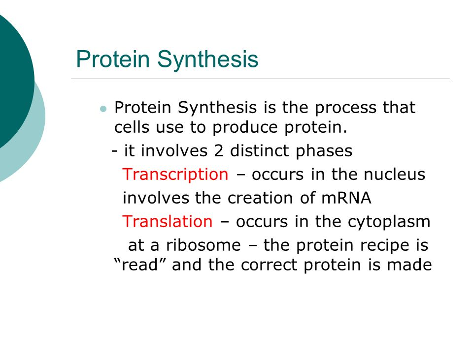 Protein Synthesis Protein Synthesis is the process that cells use to produce protein.