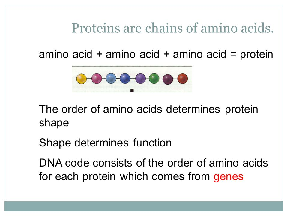 Proteins are chains of amino acids.