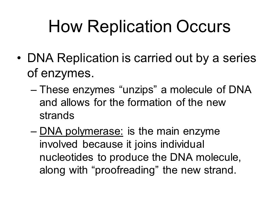 How Replication Occurs DNA Replication is carried out by a series of enzymes.