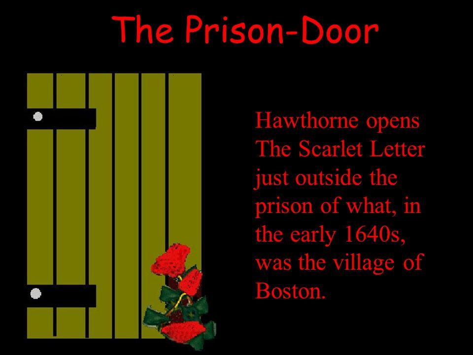 Scarlet Letter Prison Door Essay About Myself - image 8