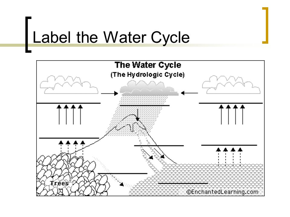 Water cycle diagram powerpoint water cycle the twinkl mandegarfo water cycle diagram powerpoint water cycle the twinkl ccuart Gallery