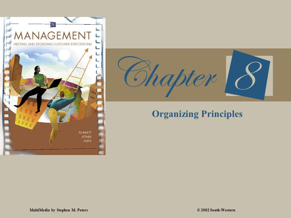 MultiMedia by Stephen M. Peters© 2002 South-Western Organizing Principles