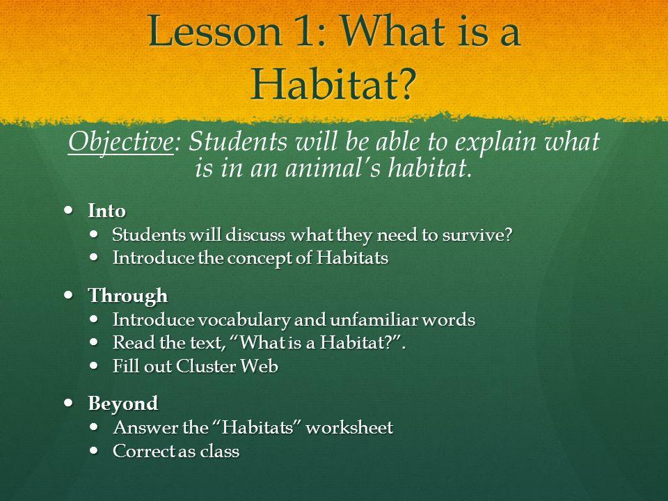 Habitat lesson ks1