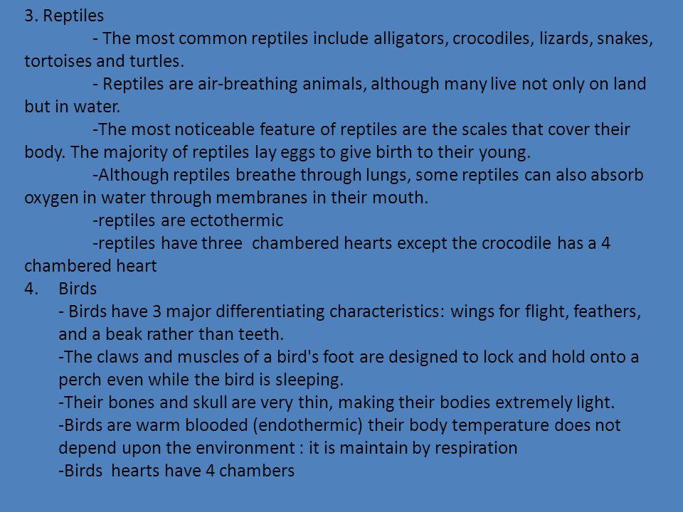 Vertebrates (have a backbone) Vertebrates include fish, amphibians, reptiles, birds, mammals, primates, rodents and marsupials.