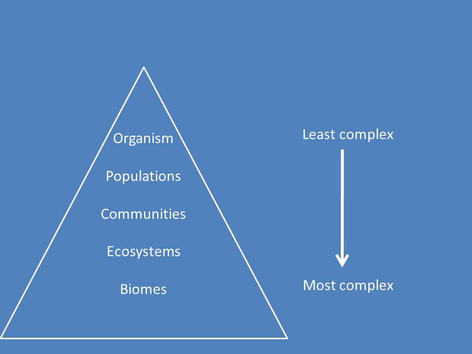 Levels of organization in a biosphere Organism- a living thing Population- a group of only one type of organism Community- a groups of different populations Ecosystem- all the populations and the non-living things in area (another way of stating this is all the biotic and abiotic factors in an area) biotic factors - all the living things abiotic factors- all the non-living things (soil, water, air, rocks, etc.