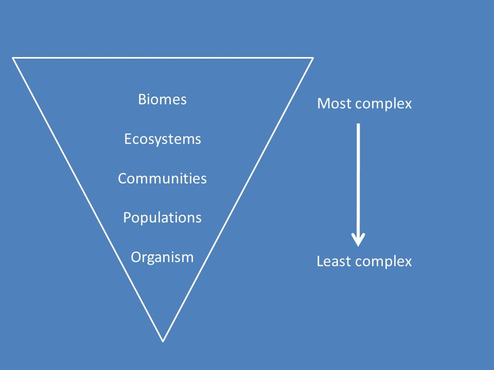 Organism Populations Communities Ecosystems Biomes Least complex Most complex