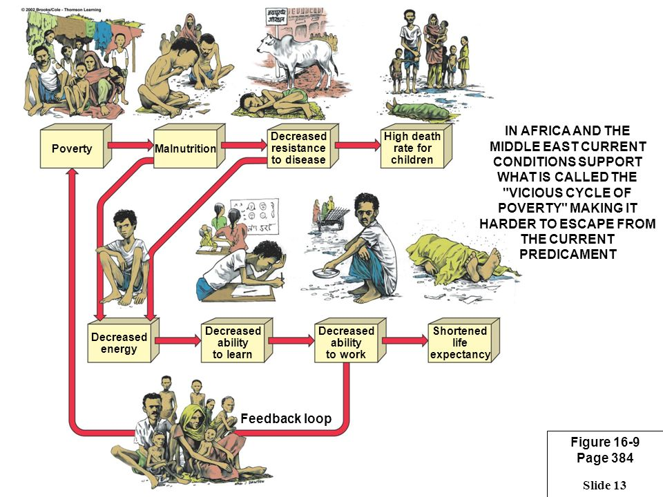 vicious cycle of poverty essays Free college essay vicious cycle of poverty vicious cycle of poverty 1 vicious cycle of poverty people in general like to find reasons for poverty and unfortunately.