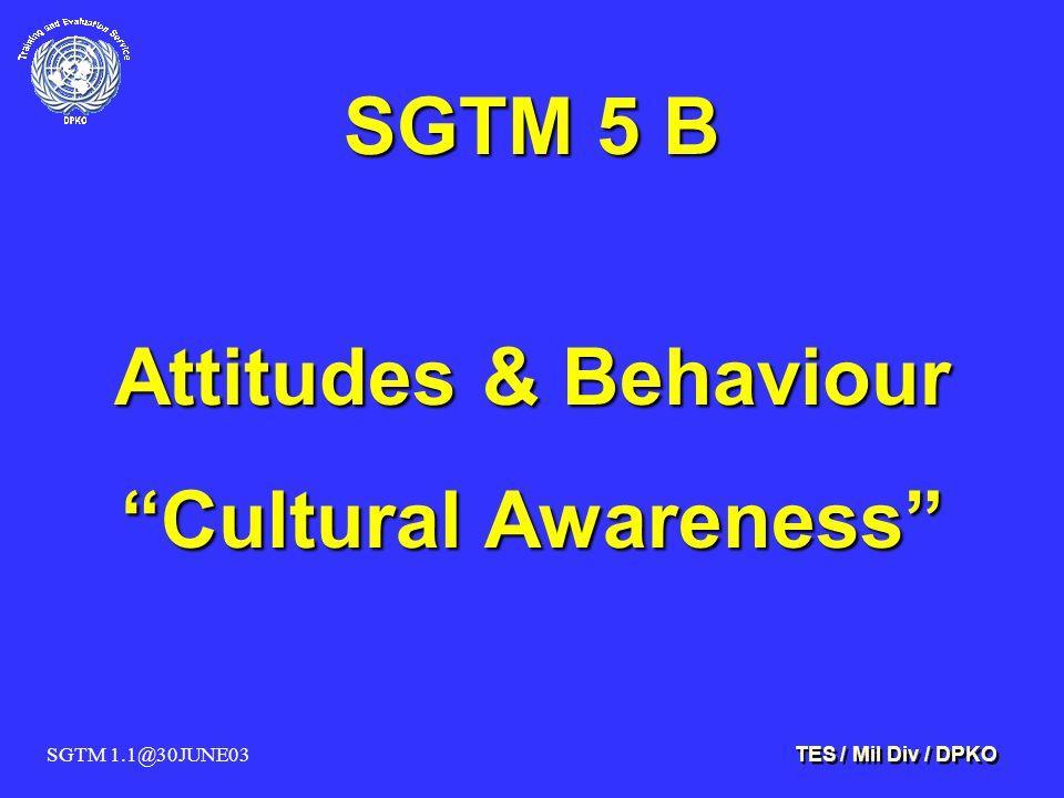 SGTM 1.1@30JUNE03 TES / Mil Div / DPKO SGTM 5 B Attitudes & Behaviour Cultural Awareness