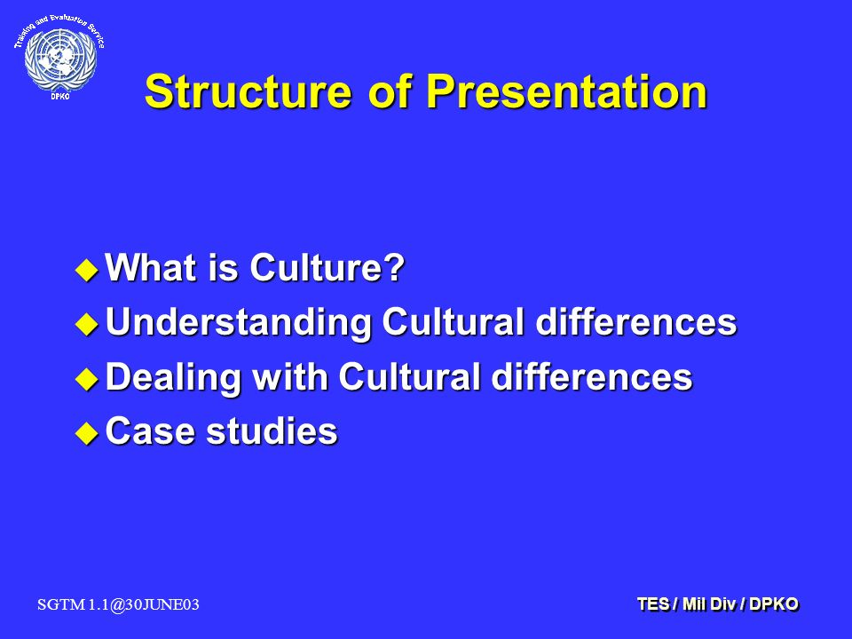 SGTM 1.1@30JUNE03 TES / Mil Div / DPKO Structure of Presentation u What is Culture? u Understanding Cultural differences u Dealing with Cultural diffe