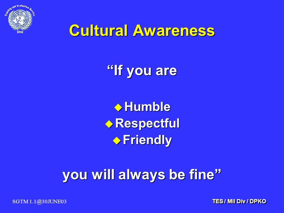 SGTM 1.1@30JUNE03 TES / Mil Div / DPKO Cultural Awareness If you are u Humble u Respectful u Friendly you will always be fine