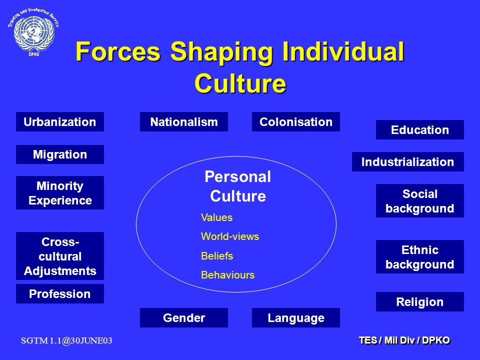 SGTM 1.1@30JUNE03 TES / Mil Div / DPKO Forces Shaping Individual Culture Personal Culture Values World-views Beliefs Behaviours Urbanization Migration Minority Experience Cross- cultural Adjustments Profession GenderLanguage Education Industrialization Social background Ethnic background Religion NationalismColonisation