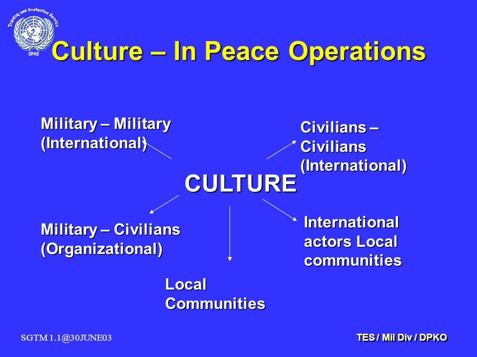 SGTM 1.1@30JUNE03 TES / Mil Div / DPKO Culture – In Peace Operations Civilians – Civilians (International) International actors Local communities CULTURE Military – Military (International) Military – Civilians (Organizational) Local Communities