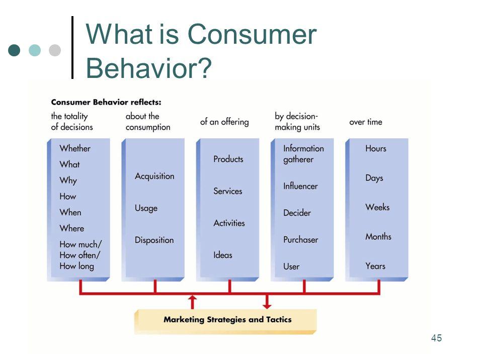 45 What is Consumer Behavior