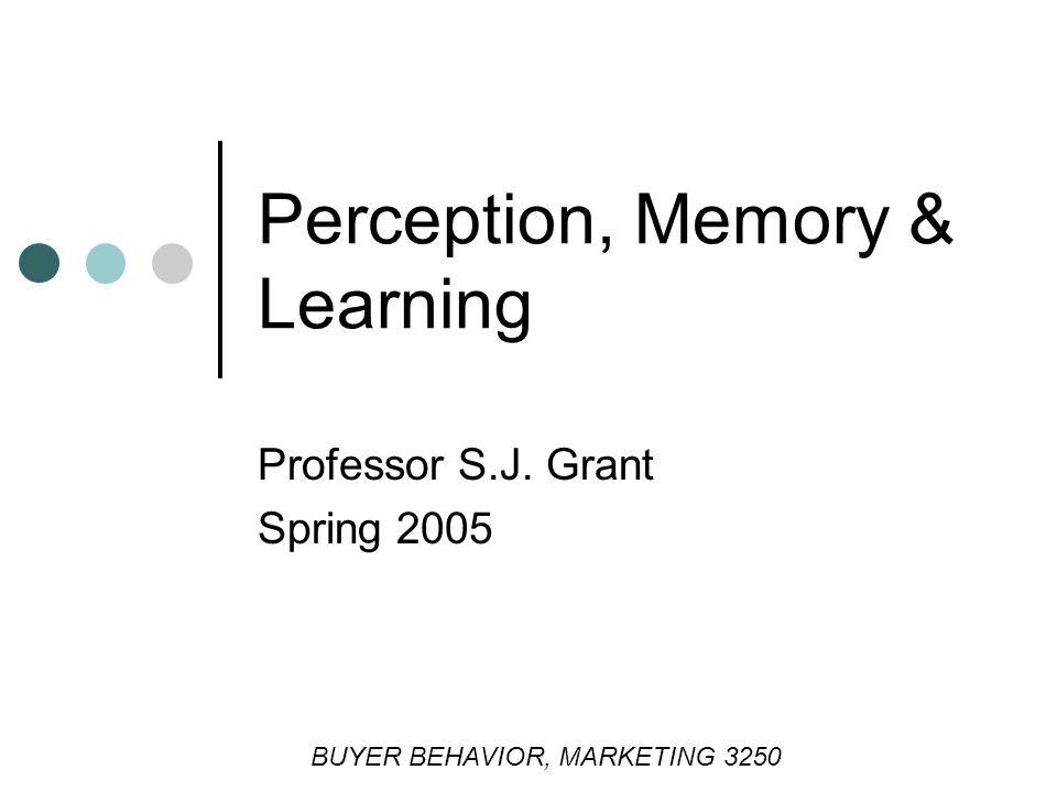 Perception, Memory & Learning Professor S.J. Grant Spring 2005 BUYER BEHAVIOR, MARKETING 3250