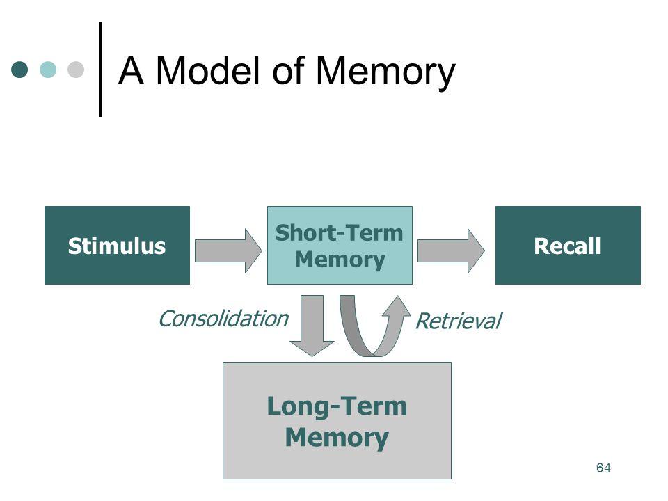 64 A Model of Memory Stimulus Short-Term Memory Long-Term Memory Retrieval Consolidation Recall