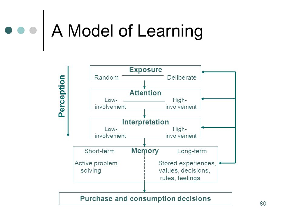 80 Exposure Random Deliberate Attention Low- High- involvement Interpretation Low- High- involvement Short-term Memory Long-term Active problem Stored experiences, solving values, decisions, rules, feelings Purchase and consumption decisions Perception A Model of Learning